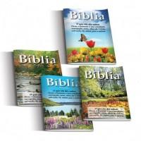Combo Bíblia Porção para evangelismo (50 unid)